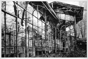 In Feldern, 25,5 x 37,7 cm, Heliogravüre