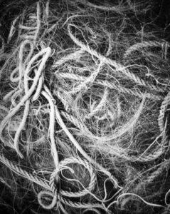Networks, 49 x 39 cm, Photogravure